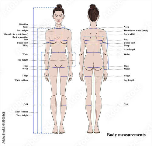 body measurements diagram - Ferdin yasamayolver com
