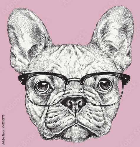Fotografiet  Hipster Geek French Bulldog vector illustration