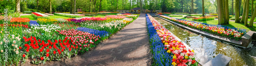 Valokuva Panorama of several flowerbeds with tulips and other flowers