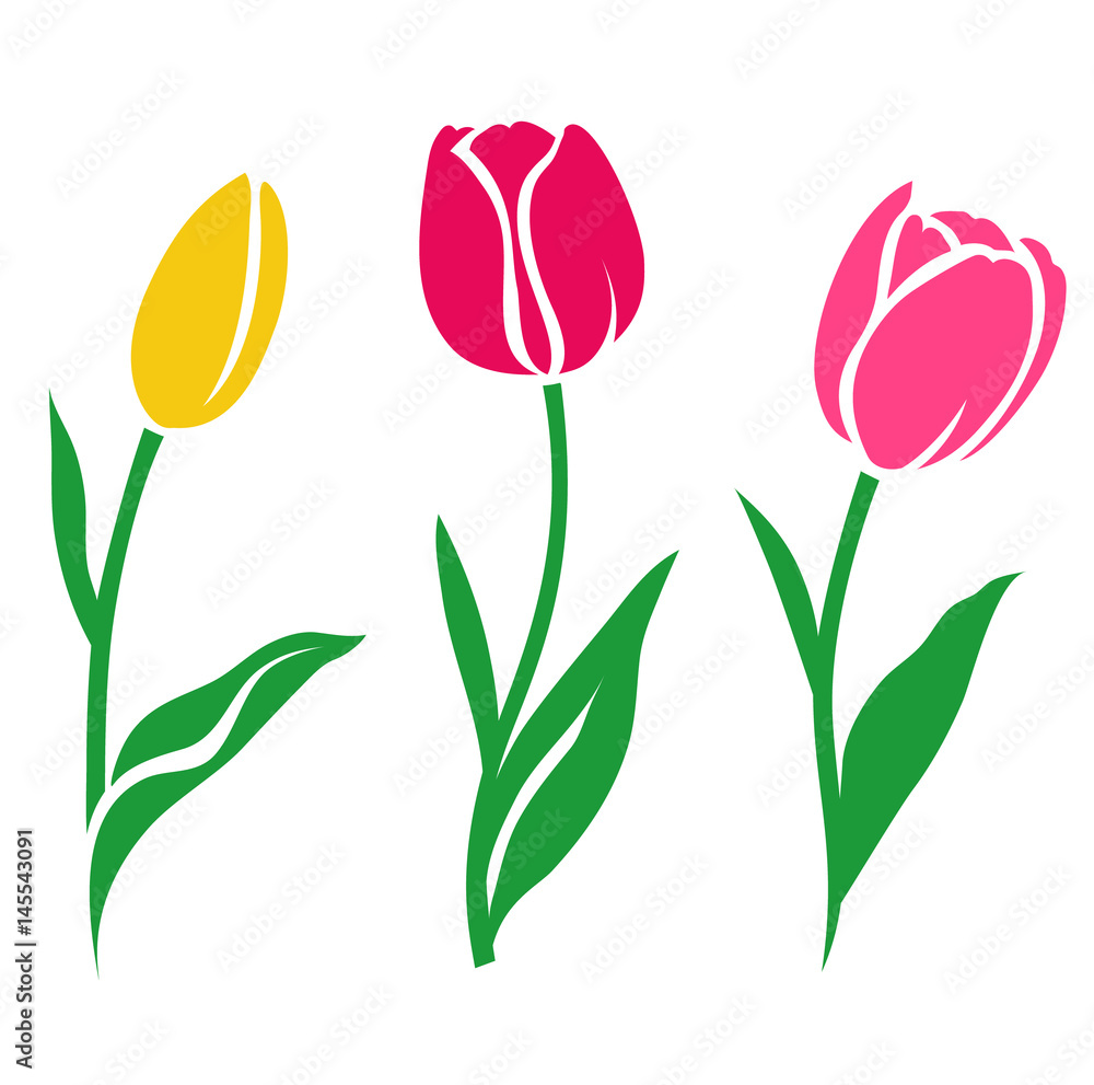 Fototapety, obrazy: Set of colorful tulip silhouette. Vector illustration. Collection of decorative flowers