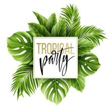 Summer Tropical Leaf Backgroun...