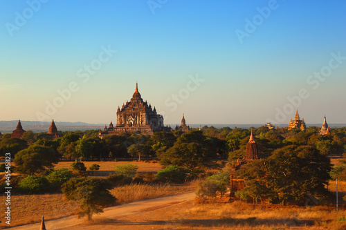 Garden Poster Light pink Temples in Bagan at sunset, Myanmar