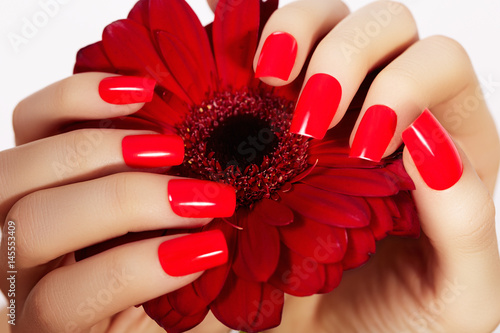 Fotografie, Obraz Beauty hands with red fashion manicure and bright flower