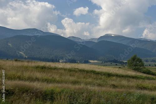Fototapeta Majestic mountain top overgrown with coniferous forest, valley and glade, Rila mountain, Bulgaria   obraz na płótnie