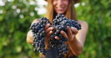 Girl In September To Harvest V...