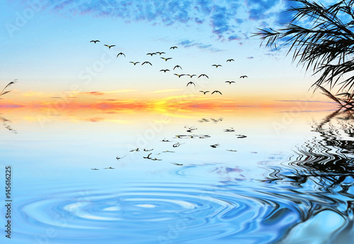 ondas en el agua del lago