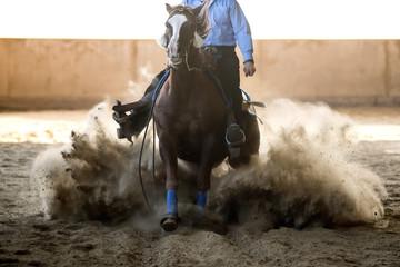 équitation western, épreuve...