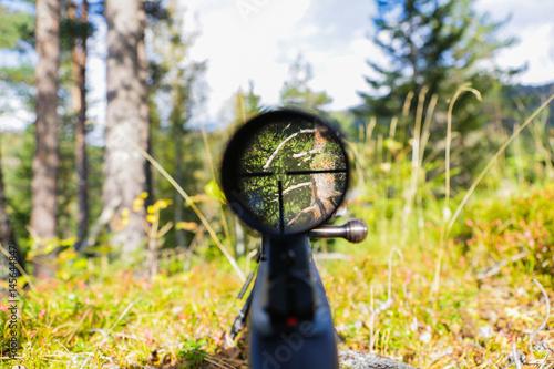 Cuadros en Lienzo  Sniper gun scope view.