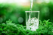 canvas print picture a glass of cool fresh water on natural green background