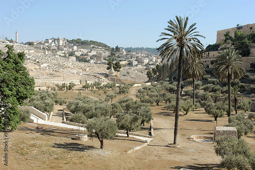 Fotomural Kidron Valley and Mount of Olives