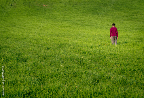 Happy boy running on the green wheat field Poster