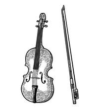 Violin. Vintage Black Engraving Illustration