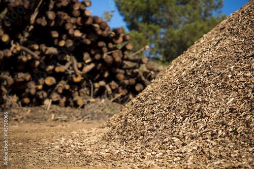 Photo Biomass background