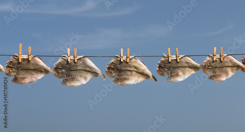 Dried Fish On Rope in Fuerteventura, Spain