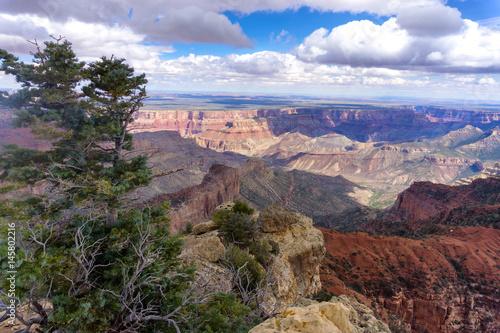 In de dag Bruggen Landscape of the Grand Canyon