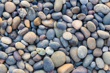 Small Sea Stones, Gravel. Back...