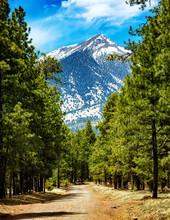 Flagstaff Arizona Road To Mountains
