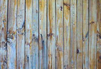 Fototapetawood texture