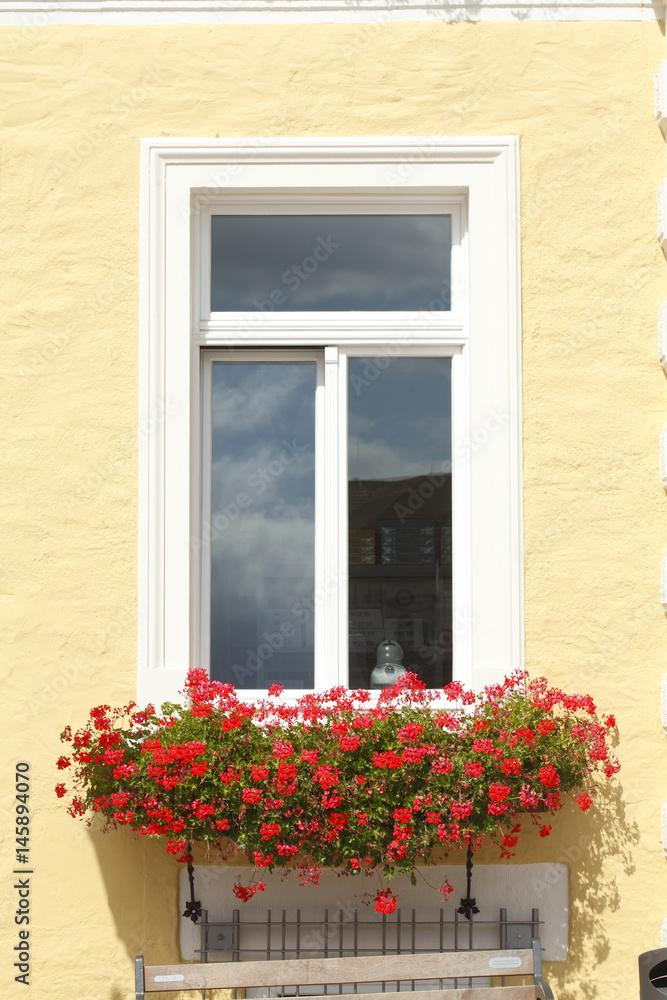 Fenster Blumenkasten Poster Sold At Europosters
