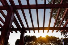 Low Angle View Of Wooden Ceiling Against Tree At Park In Shanghai,China.
