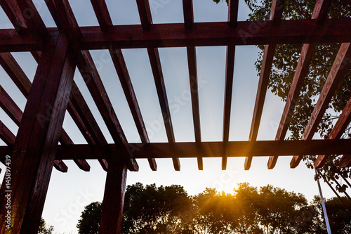 Fotografia  Low Angle View Of Wooden Ceiling Against Tree At Park in Shanghai,China