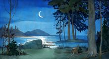 Silent Night Scene