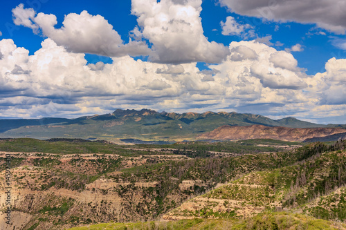 Green Spring Season Western Slope of the Rocky Mountians Canvas Print