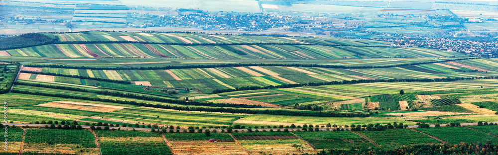 Fototapety, obrazy: Extra wide panorama of small green fields as a quilt view from above