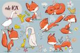 Fototapeta Fototapety na ścianę do pokoju dziecięcego - set with cute fox and farm birds