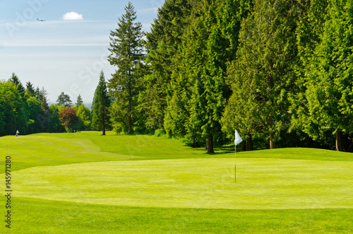 Poster Golf Golf course with gorgeous green and flag