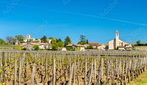 Vineyards near Saint Emilion, France Wallpaper Mural