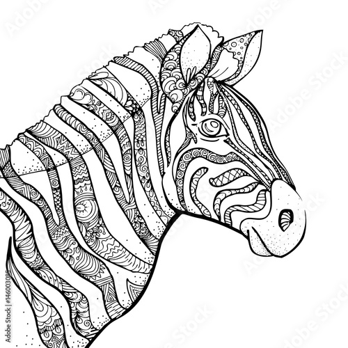 hand-drawn-ink-doodle-zebra-on-white-background-design-for-adults-poster-print-t-shirt-invitation-banners-flyers-sketch-vector-eps-8