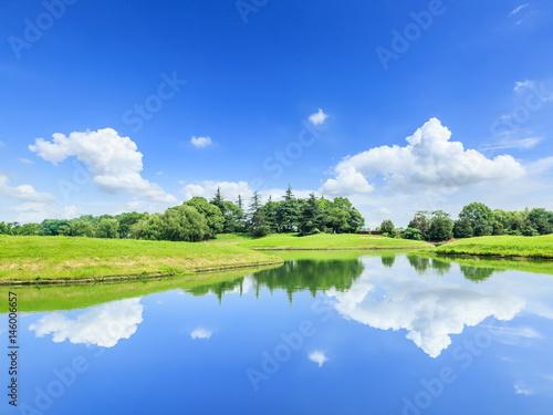 Fototapeta green grass and pond under the blue sky obraz na płótnie