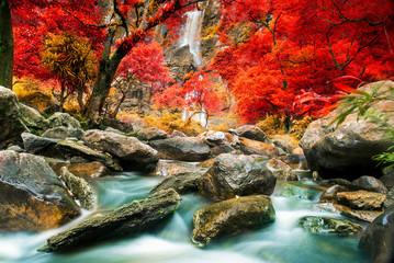 FototapetaBeautiful waterfall in autumn forest
