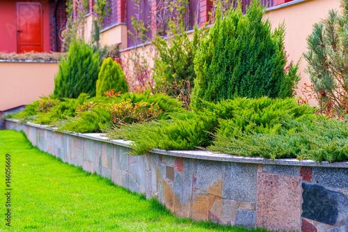 In de dag Lime groen the flowerbed in landscape design