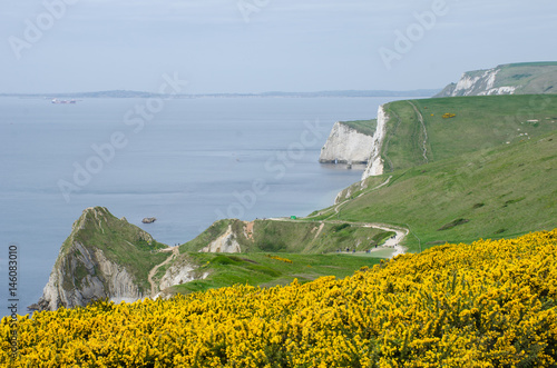 Spoed Foto op Canvas Kust Dorset Coast on route to Durdle Door