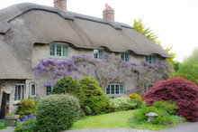 Country Cottage With Wisteria ...