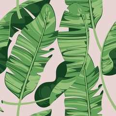 Tropical print summer exotic plant. Banana leaves. Pattern, seamless floral v...