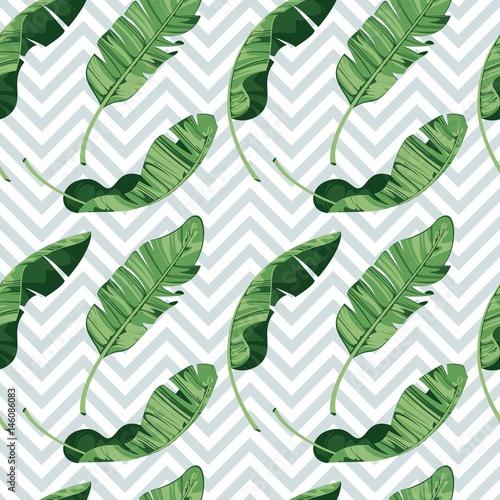 Tropical Print Summer Exotic Plant Banana Leaves Pattern
