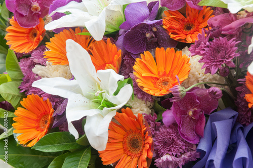 In de dag Poppy Multi color of Gerbera and lily flowers