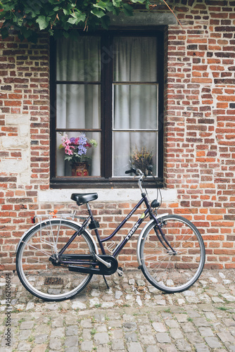 Bicycle parked in a house Wallpaper Mural