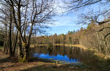 Taarntjernet, A Small Lake In ...