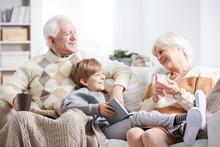 Grandparents Reading To Grandson