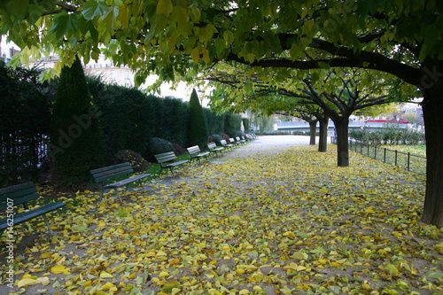 Photo  Paris Parc Fall Herbst