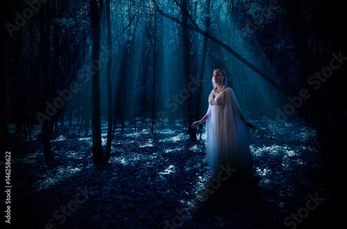 Plakat Elven dziewczyna w lesie