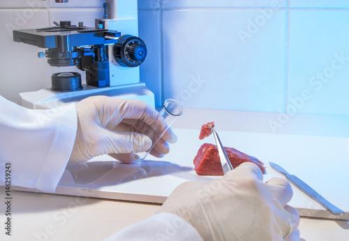 Fotografie, Obraz  frisches Fleisch wird in einem Labor untersucht