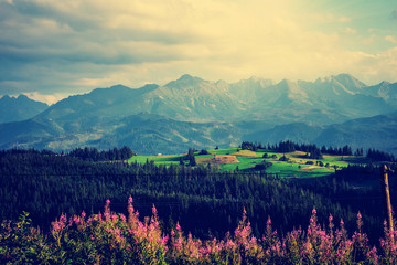 Obraz na SzklePanoramic View of Idyllic Mountain Landscape in the Tatras. With Fresh Green Mountains Pastures, Flowers. High Tatras. (Filtered image processed vintage effect and motion blur background)