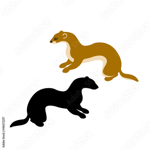 Photo  weasel vector illustration style Flat silhouette