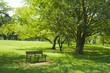 公園の木陰 ベンチ