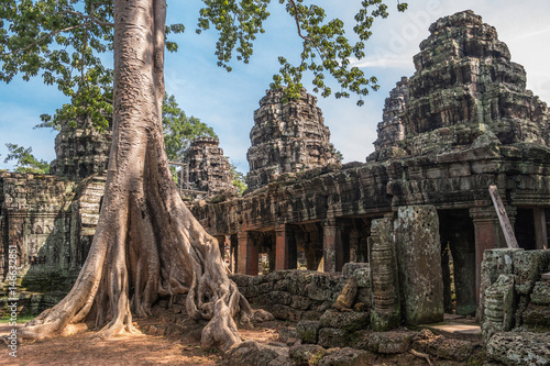 Poster Ruine Banteay Kdei temple with silk cotton tree roots in Angkor, Siem Reap, Cambodia.